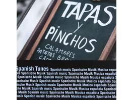 SPANISH TUNES CD Spanische Musik