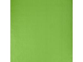 SURPRISE Geschenkpapier hellgrün