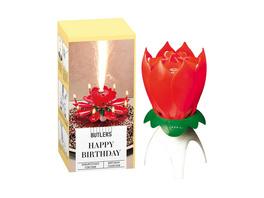 HAPPY BIRTHDAY Geburtstagsfontäne