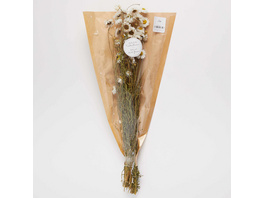 FLOWER MARKET Gänseblümchen